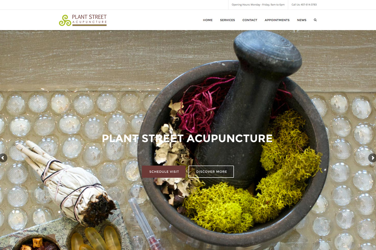 make an acupuncture website